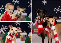Christmas Cards 2019 Important Information!